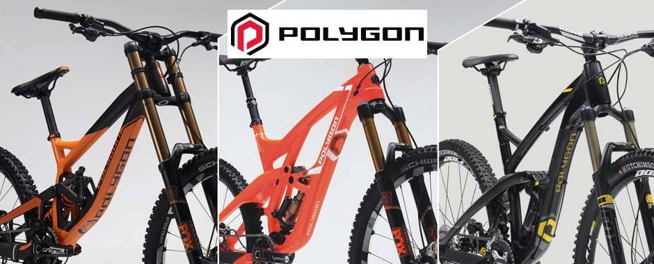 Polygon-Bikes-Penang-Hoong-Lim-Cycle-2.jpg